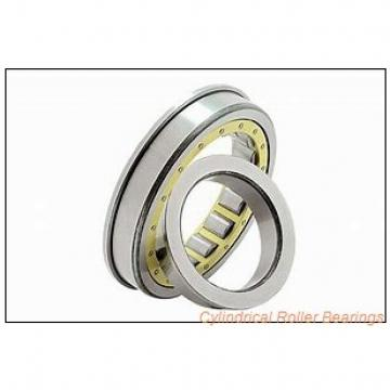 1.969 Inch | 50 Millimeter x 4.331 Inch | 110 Millimeter x 1.575 Inch | 40 Millimeter  CONSOLIDATED BEARING NUP-2310E  Cylindrical Roller Bearings